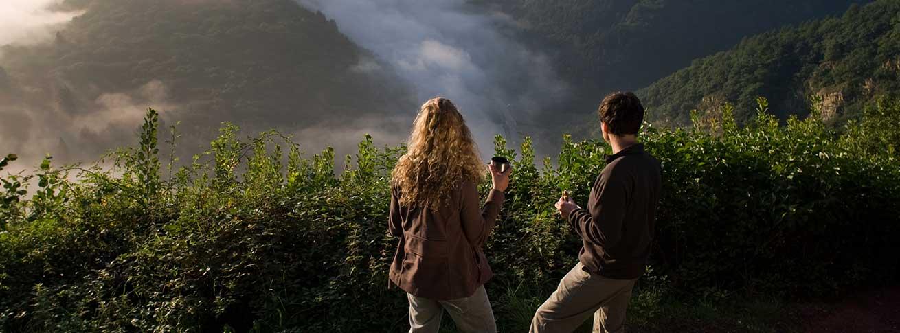 Saar-Hunsrück-Steig –  ruhige Tage in der Natur